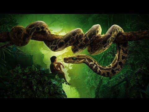 Download Jungle Book movie in Hindi