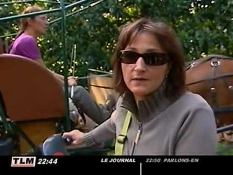 Collecte des d chets le grand retour du cheval lyon youtube - Collecte encombrants lyon ...
