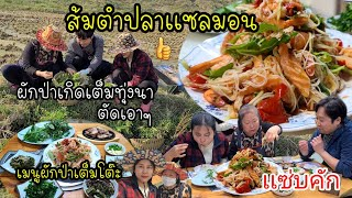 EP.494 Pick the wild vegetables for cooking. Papaya Salad with salmons,And other vegetables