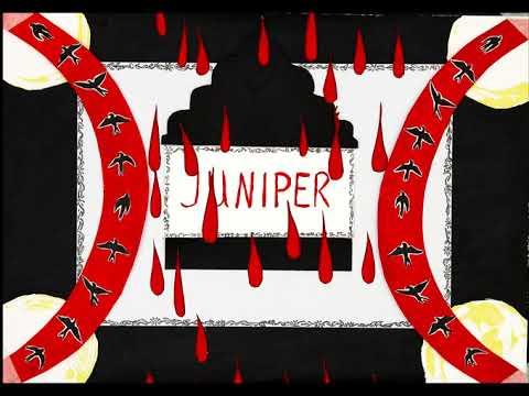 MODERN WOMAN - JUNIPER (Official Visualizer)