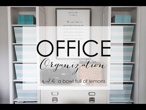 Office Tour & Organization