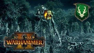 Wood Elves vs Lizardmen | BIG BUSINESS DURTHU - Total War Warhammer 2