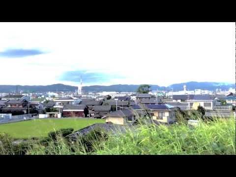 Osaka views - Distant Skyline - Dragonflies - Rice field - Shinkansen