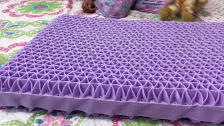 PURPLE PILLOW REVIEW - AFTER USING IT FOR 2 MONTHS | GOOD NECK SUPPORT PILLOW