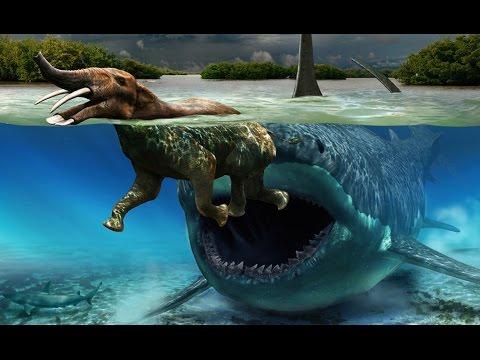 Top 5 Weird Prehistoric Animals Creatures