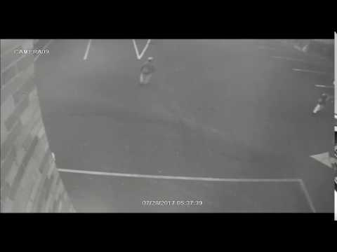 VIDEO: 83-Year-Old Woman Sexually Attacked Behind Englewood Church