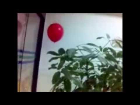 Terroríficos 7 fantasmas colombianos vistos en video