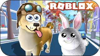 ROBLOX - 🐕🐾 THE SECRET LIFE OF YOUR PETS!