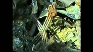 Приказано выжить и жить , Чечня документальный фильм. Часть 4