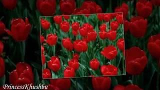 MAINE MANGI HAI PAS YE DUWA.  4 u Arslan Bhai : )