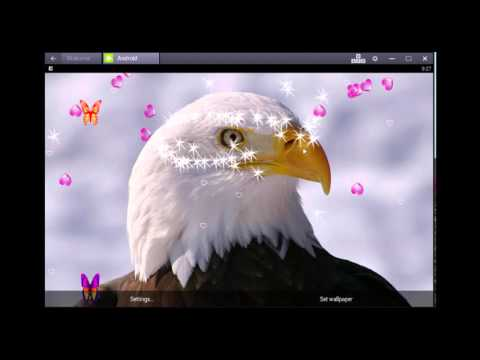 3d Eagle Live Wallpaper
