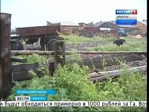 знакомства в иркутске без регистрации секс