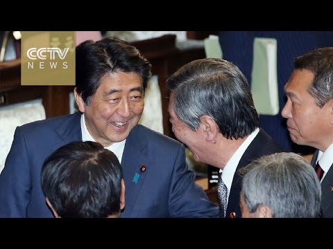 Shinzo Abe says Japan should take lead in pushing TPP into effect
