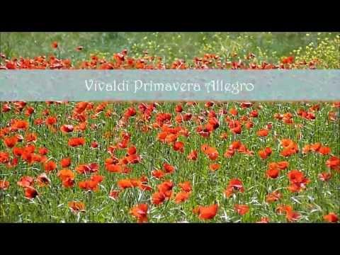 Vivaldi ~ Primavera ~ Allegro ~ Toscana