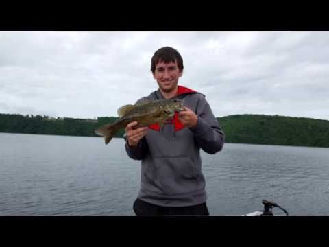 Table rock lake video fishing report june 6 2017 youtube for Missouri fishing regulations 2017
