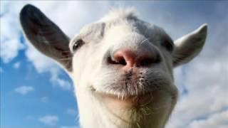 Odgłosy kozy