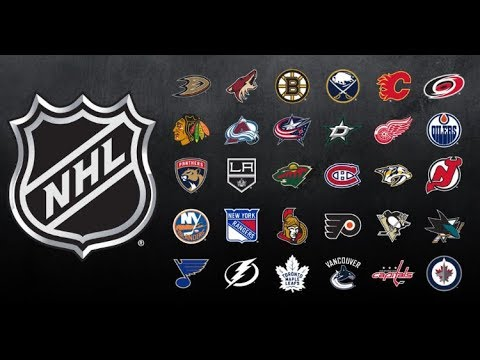 Best Player On Every NHL Team 2018-19