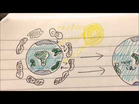 Environmental law for dummies introduction