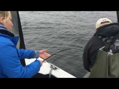 Halibut Fishing Trip Prince Rupert Sept 2016
