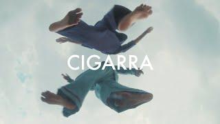 ANAVITÓRIA - Cigarra (visualizer)
