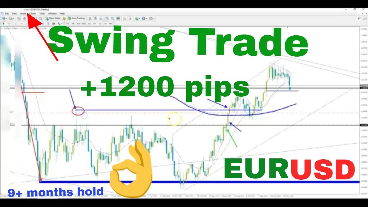 1000 pips forex strategy
