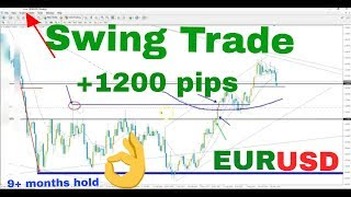 price action forex strategy