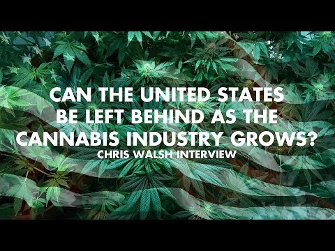 Can The United States Be Left Behind As The Cannabis Industr