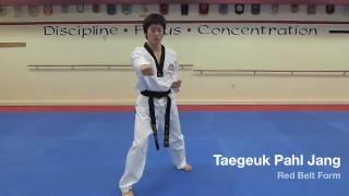 Taegeuk Pahl Jang - Red Belt Form