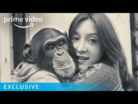 Project Nim Bob Ingersoll interview | Prime Video