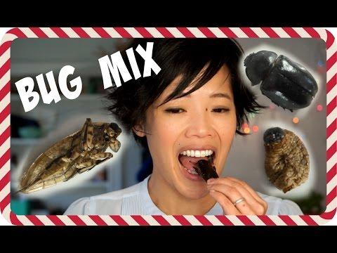 Day 4: Giant Water Bug, Rhino Beetle, Sago Worm, Crickets - 5 Days of Bug Eating