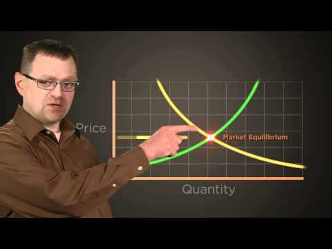 Equilibrium: The Economic Lowdown Video Companion