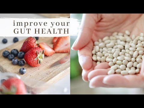 4 Methods to Improve Gut Health Without Altering Your Diet Plan