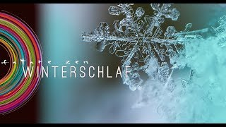 ❄️ WINTERSCHLAF by FUTURE ZEN 𝗺𝘂𝘀𝗶𝗰 𝗳𝗼𝗿 𝗽𝗲𝗮𝗰𝗲 | music for sleeping and deep relaxation