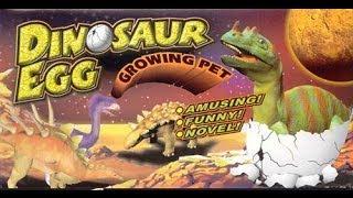 Dinosaur Egg - Growing Pet - 4 days in 1 video!