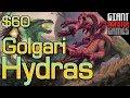 Budget Modern Deck Tech - Golgari Hydras ($60)