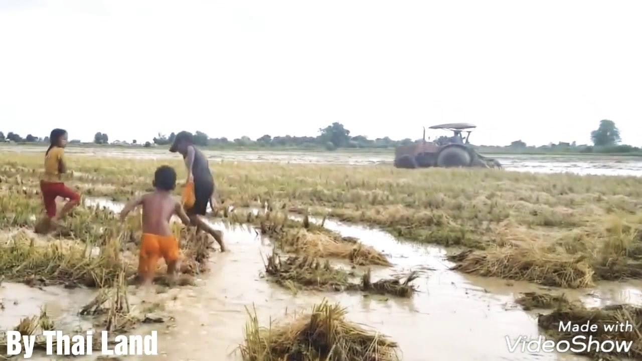 อีกครั้ง!! เด็กกัมพูชาจับงูใหญ่หลังรถแทรกเตอร์