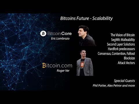 Bitcoin Scaling Debate - Big Blocks, Hard Fork - Roger Ver, Phil Potter, Petrov, Lombrozo - Dec 2016