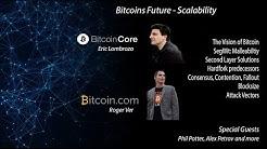 Bitcoin Scaling Debate - Big Blocks, Hard Fork - Roger Ver, Phil Potter, Petrov, Lombrozo - Dec 2016