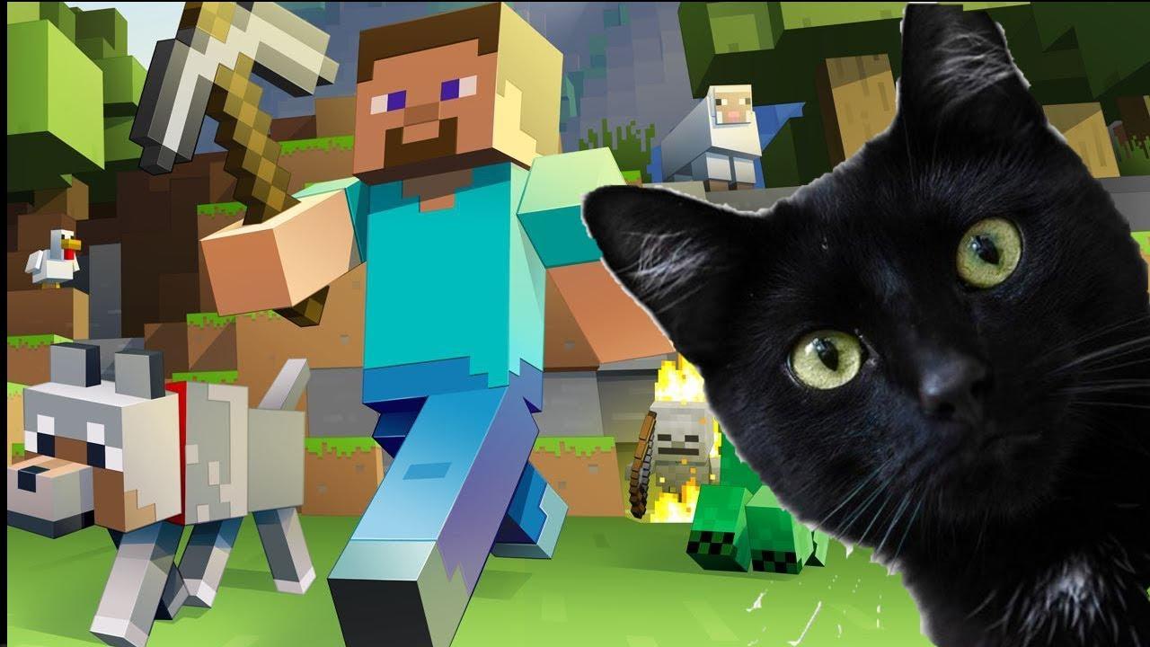 Как кота в майнкрафт