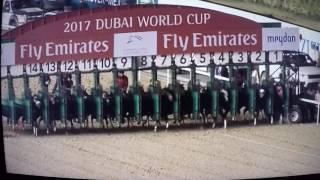 ARROGATE !!!  DUBAI WORLD CUP $10M 2017