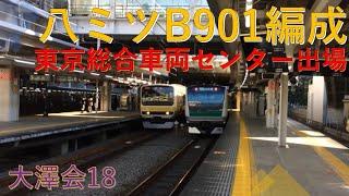 E231系B901編成TK出場