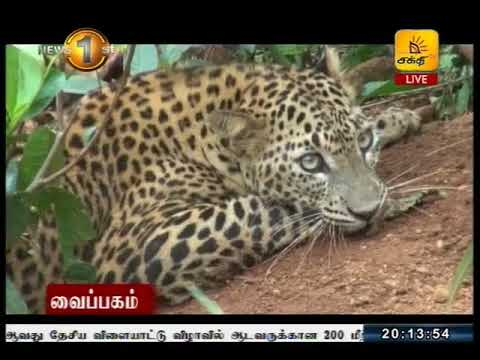 News1st Tamil Prime Time, Saturday, September 2017, 8PM (23-09-2017)