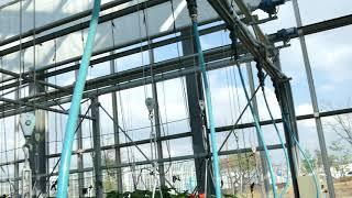 공중에 달린 딸기 재배 시설을 보여드립니다. 바로 Ha…