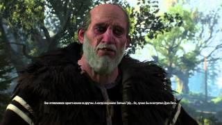 Ведьмак 3 - Глава 154 - Сердце леса (полное прохождение БЕЗ КОММЕНТАРИЕВ)