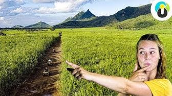 Das MUSST du auf Mauritius gemacht haben! Tipps für Urlaub   Lari auf Safari