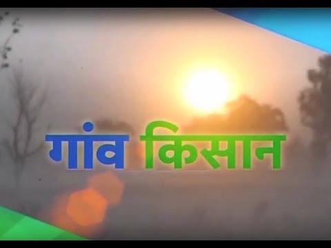 Gaon Kisan - Pradhan Mantri Kaushal Vikas Yojana - Kaithal Haryana