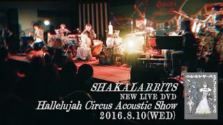 SHAKALABBITS「Hallelujah Circus Acoustic Show」DVD OfficialTrailer