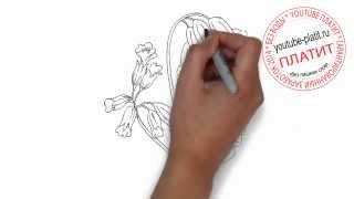 Как нарисовать цветы поэтапно карандашом  Декоративные цветы(Как нарисовать дружную семью поэтапно карандашом за короткий промежуток времени. Видео рассказывает о..., 2014-07-02T05:48:36.000Z)