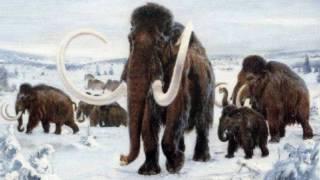 видео: Палеонтолог Александр Марков - Причины вымирания мамонтов