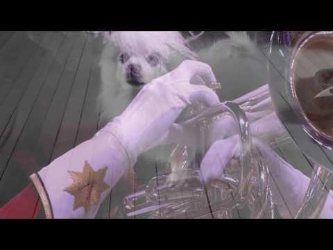 Doggo Corps International: RIP Gabe the Dog